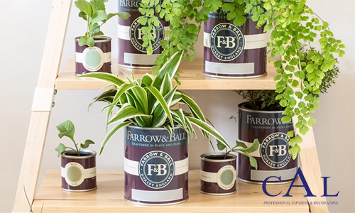 plant paint pops