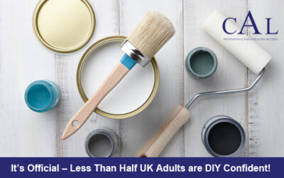 It's Official – Less Than Half UK Adults are DIY Confident!