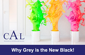 why grey is the new black