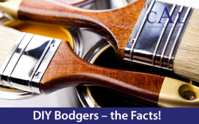 DIY Bodgers – the Facts!